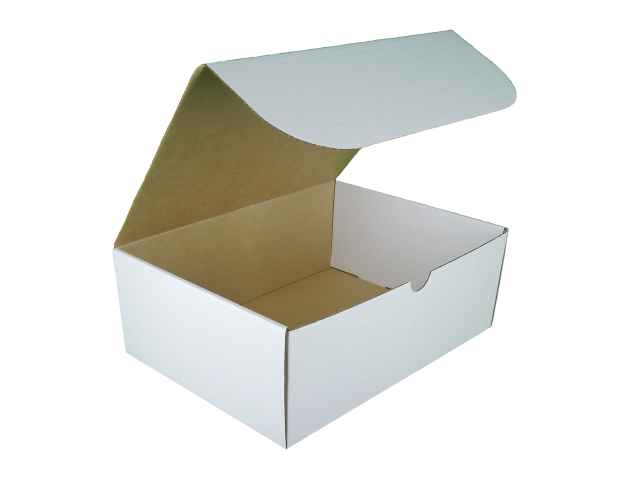 Rectangle Hinged Lid Cardboard Box