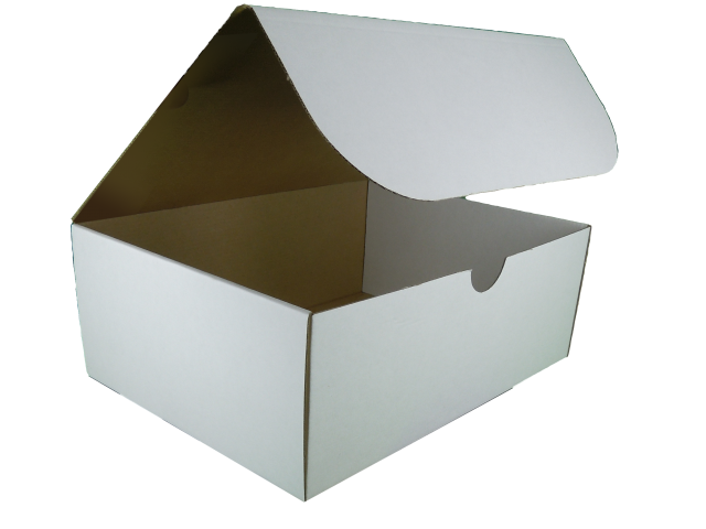 Rectangle Box with Hinged Lid