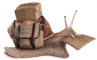 Mailer & Courier Bags