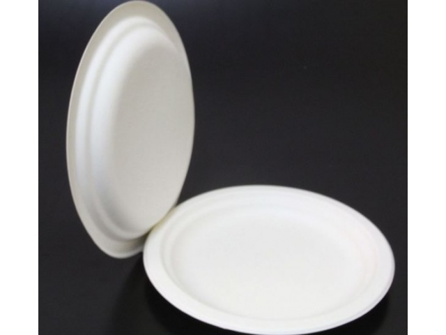 "Biodegradable 9"" Plates"